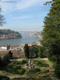 porto most arabido 0666